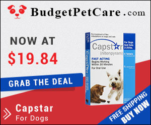 Capstar is an oral tablet to control adult fleas on dogs within half an hour of administration and kills 100% adult fleas within 7 hours. Buy now for Extra 5% Discount and Free Shipping across USA. Use coupon: BPC5OFF to avail instant discount.