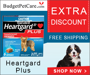 Heartgard Plus is a heartworm preventive treatment that also controls and treats various other worm infections. It also treats hookworms and roundworms.