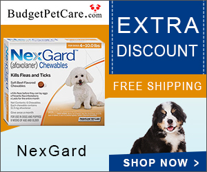 Nexgard is one of its kind oral beef flavored soft chewable that is effective against adult fleas thereby preventing flea infestations. It protects your furry pal from developing a life-threatening tick-borne disease.