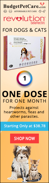 Buy Revolution Online: Heartworm & Flea Prevention for Dogs at 5% Extra OFF + Free Shipping