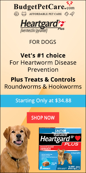 Buy Heartgard Plus Heartworm Chew Tablets at 5% Extra Discount & Free Shipping